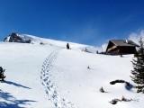 Vorschau Schneeschuh-Spur bei Zirbenhütte