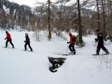 Vorschau Schneeschuh-Wandern